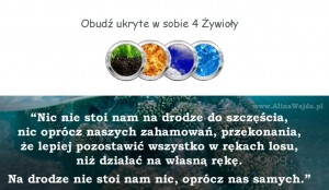 4 Zywioly grafika (7)